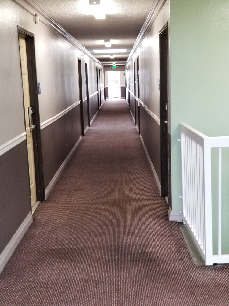 Gallery image of Hollywood Stars Inn