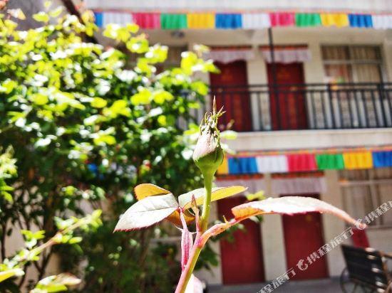 Gallery image of Lhasa Snow Inn