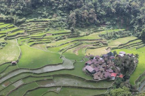 Gallery image of Banaue Hotel & Youth Hostel