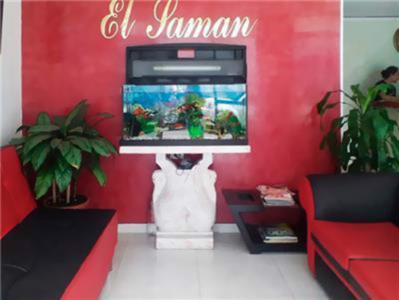 Gallery image of Hotel El Saman