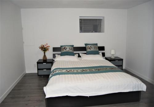 Great Vancouver 2 bedrooms suite near skytrain