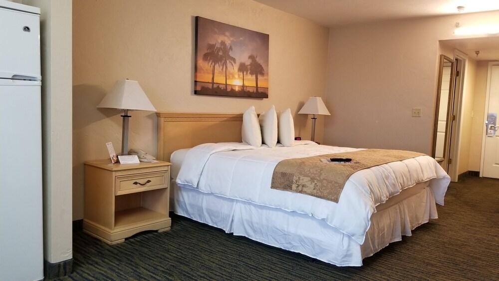 Gallery image of Beachside Hotel