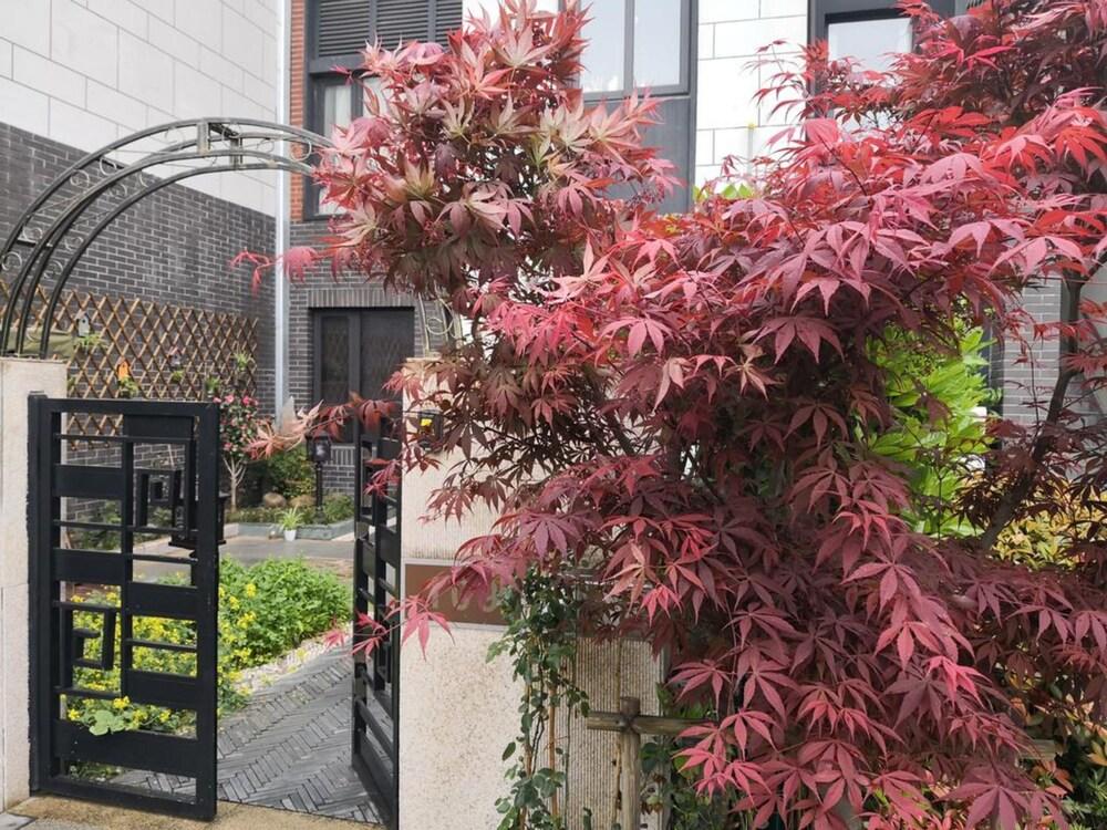 Suzhou Taihu Meilanju House