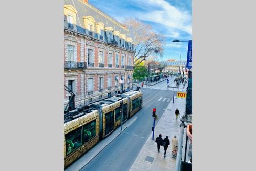 Duplex dans l'écusson de Montpellier